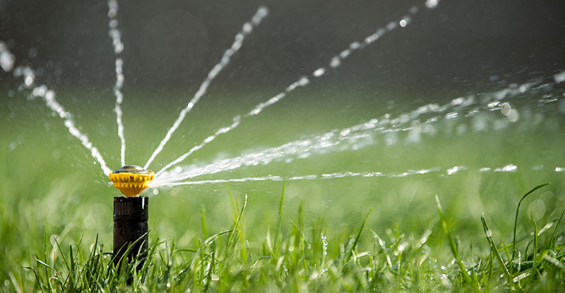 How Often Should You Water The Lawn A Guide To Turfgr