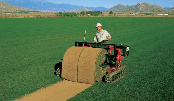 Big Rolls Machine Rentals | A-G Sod Farms